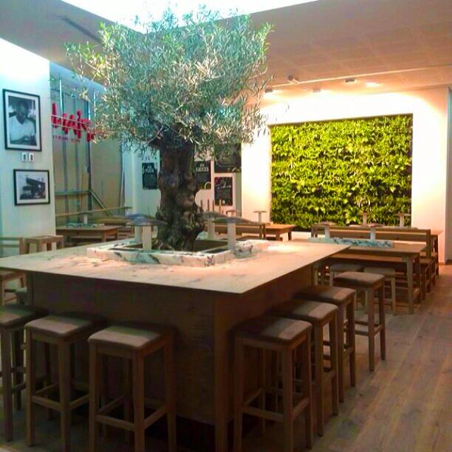 Salle restaurant - mur végétal intérieur - vapiano koweit