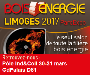 bois-energie-2017-carre-displaypicture-aspx
